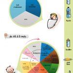 L'alimentation des enfants de 0 à 12 mois