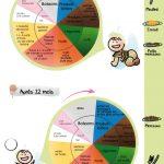 L'alimentation des enfants à partir de 12 mois et plus